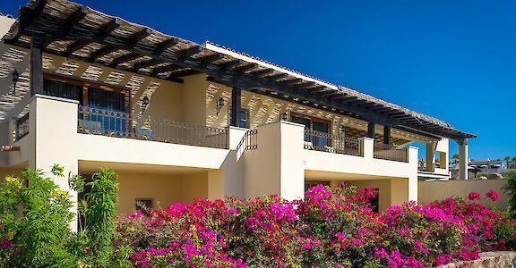 Cabo San Lucas Punta Ballena