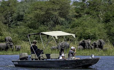 Boat safari in Liwonde. ©TO