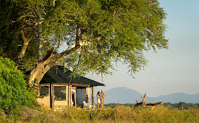 Kuthengo Camp in Liwonde. ©TO