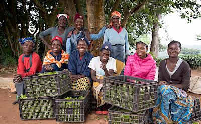 Smiling basket ladies. ©TO