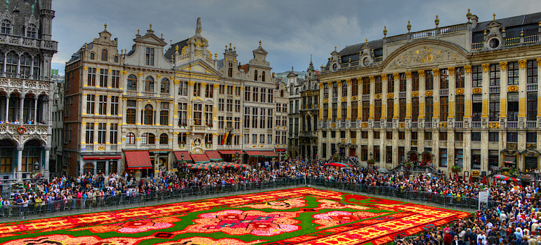 Flower carpet on Grand Place in 2014 in Brussels, Belgium. Flickr:Glyn Lowe PhotoWorks
