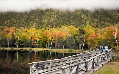 Fall colors at the White Mountains, N.H. Flickr:C W