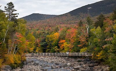 Fall colors at the White Mountains in New Hampshire! Flickr:C W