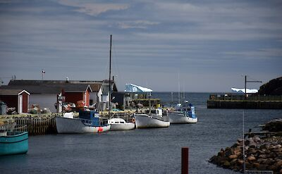 Petty Harbour in Bruce Peninsula National Park in Ontario, Canada.
