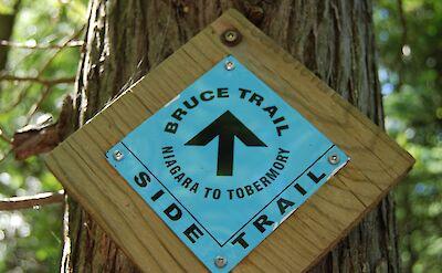 Side Trail near Tobermory, Canada. Flickr:SteFou!