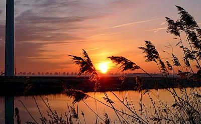 Sunset on Flevopolder, the Netherlands. Flickr:Ingo Ronner