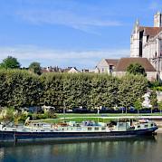 Feniks in Auxerre