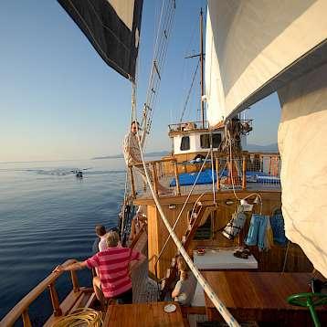 Panagiota - Panagiota | Bike & Boat Tours