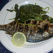 Fresh fish - Panagiota | Bike & Boat Tours