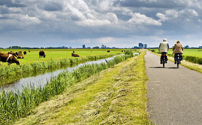 Cycling the bike paths of Holland.