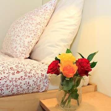 Fleur - Cabin aboard the Fleur