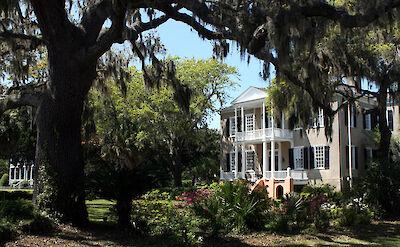 Plantation in Beaufort, South Carolina. Flickr:anoldent