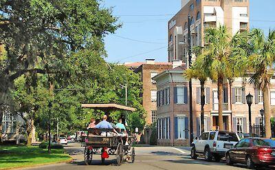Horse-drawn carriage rides in Savannah, Georgia. Flickr:faungg's photos