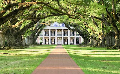 Grand plantations & oaks with Spanish moss in the South! Flickr:Michael McCarthy