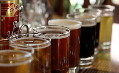Beer tasting deliciousness in Colorado. Flickr:Bill Selak