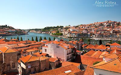 Characteristic red roofs in Porto, Portugal. Flickr:Alex Ristea