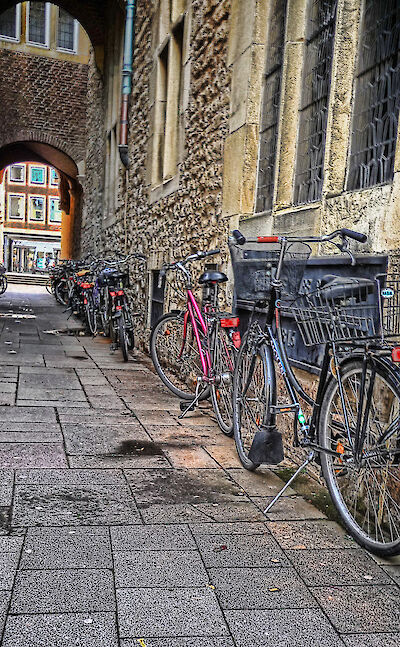 Biking through Münster, Germany. Flickr:xavi