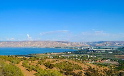 Sheep grazing at the Sea of Galilee, Israel. Flickr:Luiz Pantoja