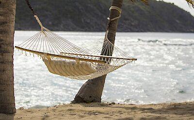 Manchioneel Beach 2