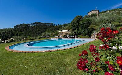 Pool 6 Copia