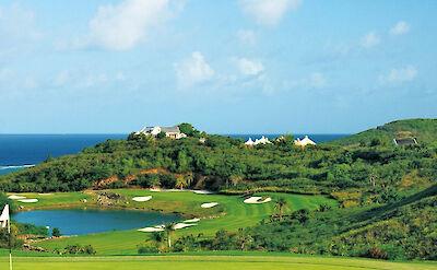M Golf 4