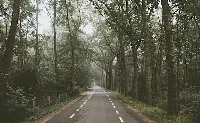 Early morning bike ride near Barneveld, the Netherlands.
