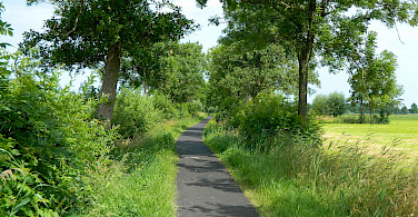 Quiet bike paths everywhere in Holland! Photo via Flickr:Ruben Holthuijzen