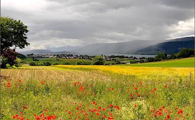 Biel, Switzerland. Flickr:Jean-Daniel Echenard
