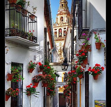 White architecture in Cordoba, Spain. Photo via Flickr:Luis Irisarri