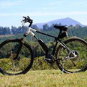 Silverback Ebike: L and XL