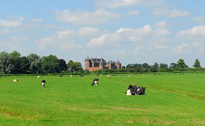 Muiderslot estate in Muiden, the Netherlands. Flickr:bert knottenbeld