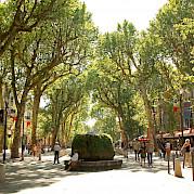 Avignon to Cassis Photo