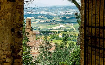Biking through the vineyards of Tuscany, Italy. Photo via Flickr:PapaPiper