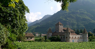 Castle Maretsch among vineyards in Bolzano, Italy. Photo from Wikimedia Commons:Alex1011