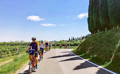 Cycling the Bolzano to Venice Bike Tour.