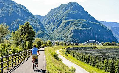 Biking through Verona, Italy.