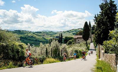 Biking among vineyards and olive groves.
