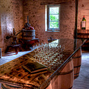 Bordeaux Wine Country Photo