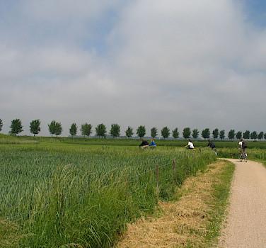 Biking near Bruges, West Flanders, Belgium. Photo via Flickr:csbelgium