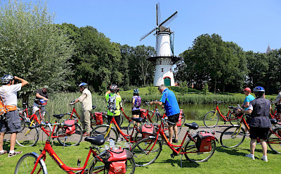 Biking past windmills in Tholen, Netherlands. ©TO