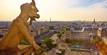 View from Notre Dame Cathedral, Paris, France. Photo via Flickr:Moyan Brenn