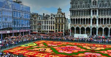 Flower carpet in Brussels, Belgium. Photo via Flickr:www.GlynLowe.com