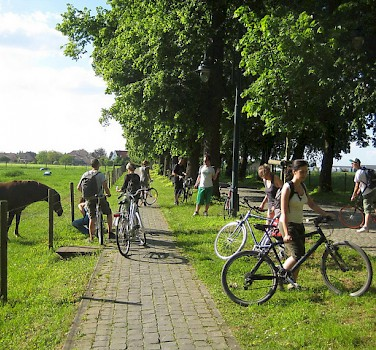 Bike break to pet some horses in Flanders. Photo via Flickr:antoine