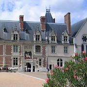 Castelos do Loire Foto