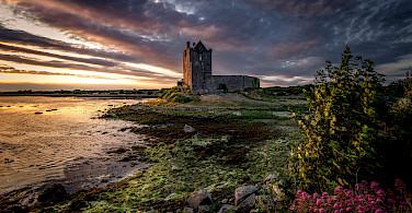 Dunguaire Castle near Kinvara, Ireland. Flickr:Bernd Thaller