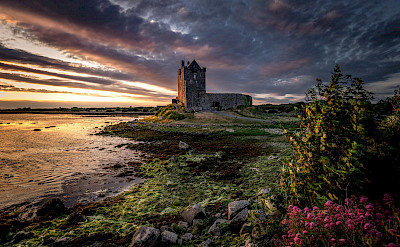 Dunguaire Castle near Kinvara, Ireland. Flickr:Bernd Thaller