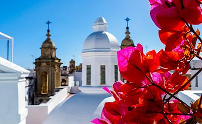 Cadiz, Spain. Photo by Federico Garcia on Unsplash