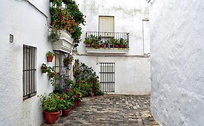 White village of Vejer de la Frontera, Spain. Flickr:Jocelyn Erskine-Kellie