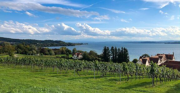 Photo Friday: Lake Constance