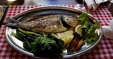 Fresh fish to fuel the bike tour on the Dalmatian Coast in Croatia. Photo via Flickr:brownpau